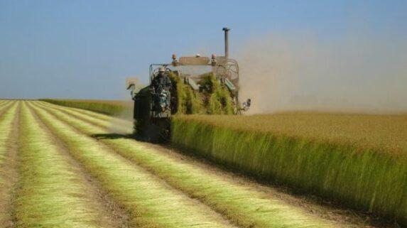 O Salão Internacional da Agricultura na França