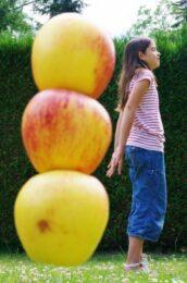 haut comme trois pommes